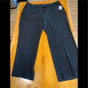 MKM Pinstriped women's plus size pants - 22W